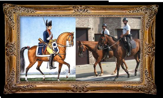 Politie te paard, toen en nu