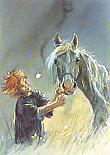 Prentbriefkaarten, Mijn paard, mijn vriend