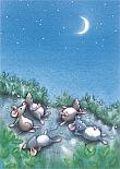 Prentbriefkaarten, Maannacht