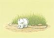 Prentbriefkaarten 10 ex., Kleine IJsbeer aan ketting