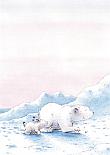 Prentbriefkaarten 10 ex., Kleine IJsbeer en de Bange Haas