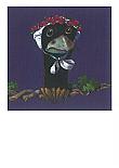 Prentbriefkaarten, Baby Kraai